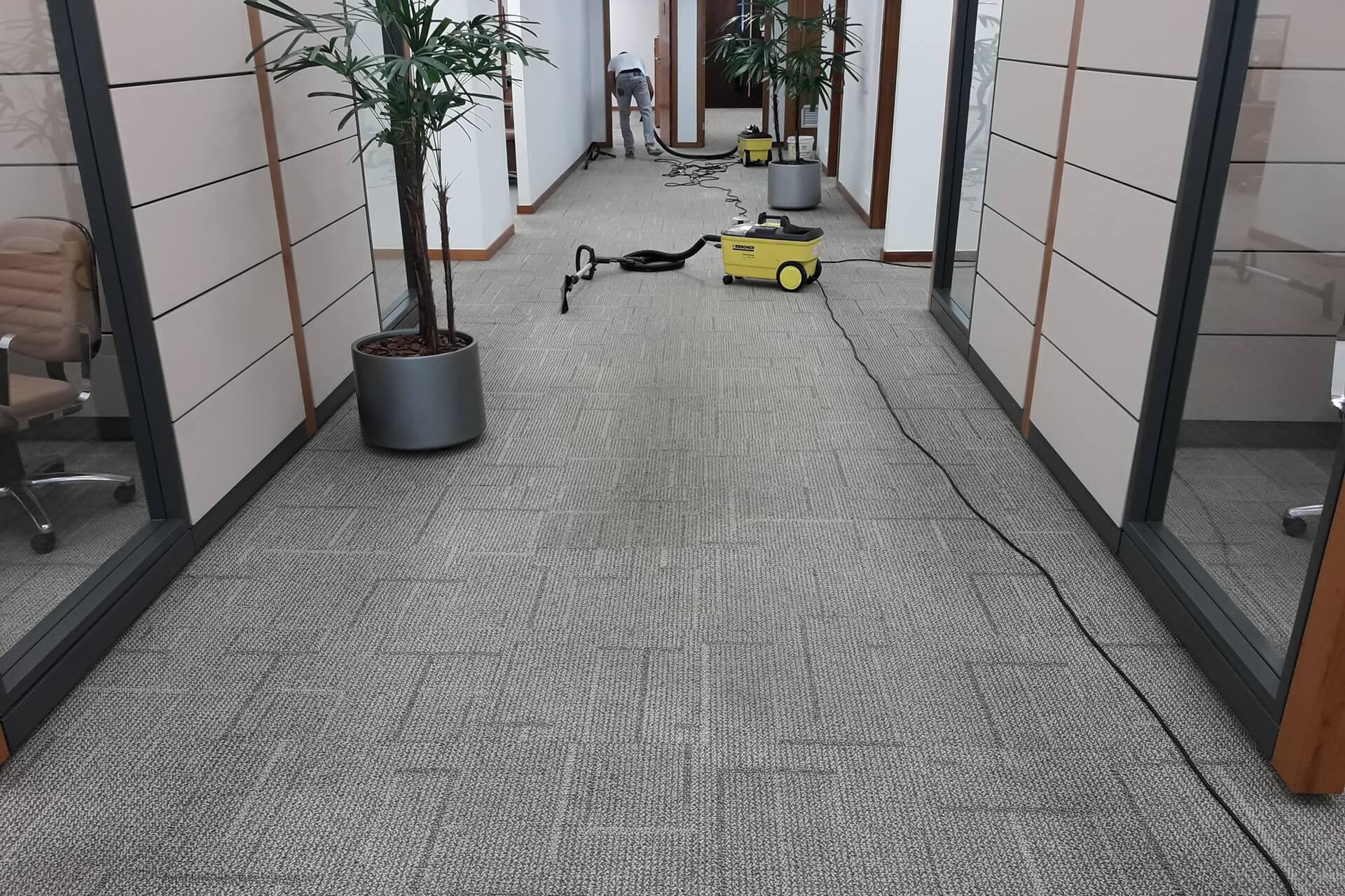 limpeza-de-carpetes_limpeza-de-carpetes-em-curitiba-1