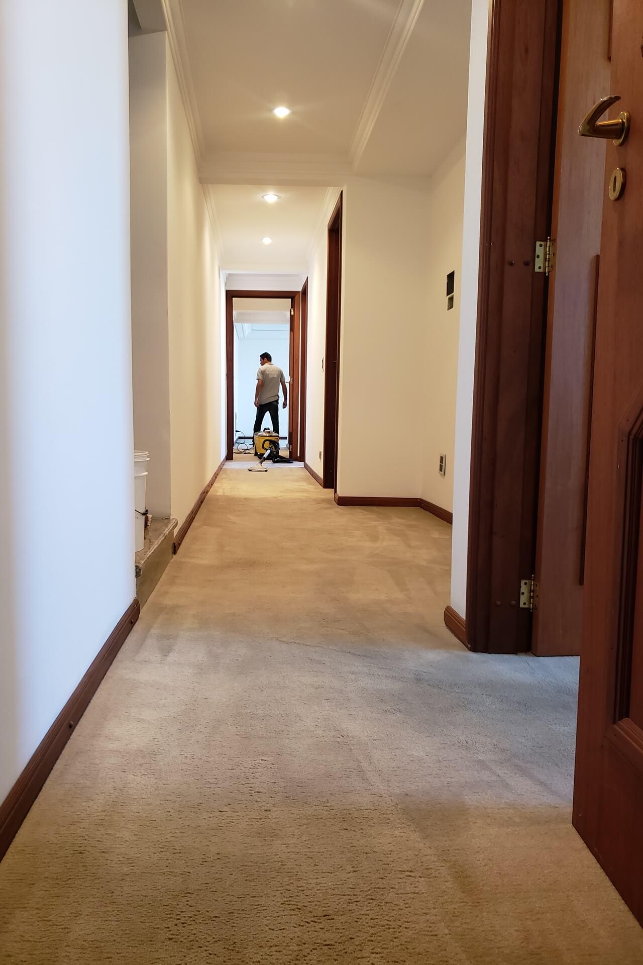 limpeza-de-carpetes_limpeza-de-carpetes-em-curitiba-8