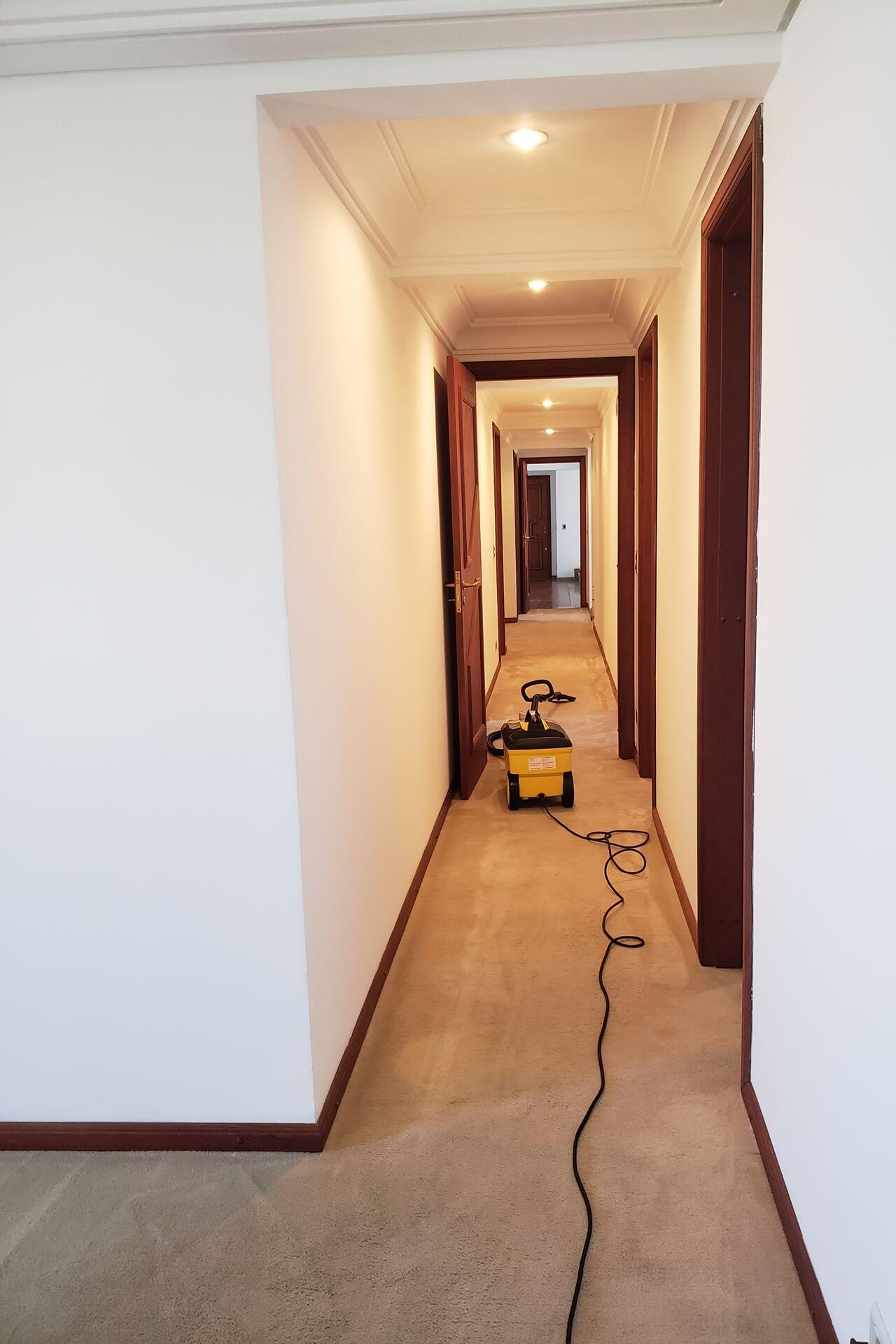 limpeza-de-carpetes_limpeza-de-carpetes-em-curitiba-9
